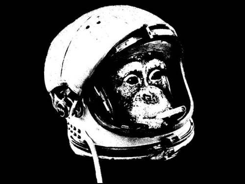 space-monkey-tshirt