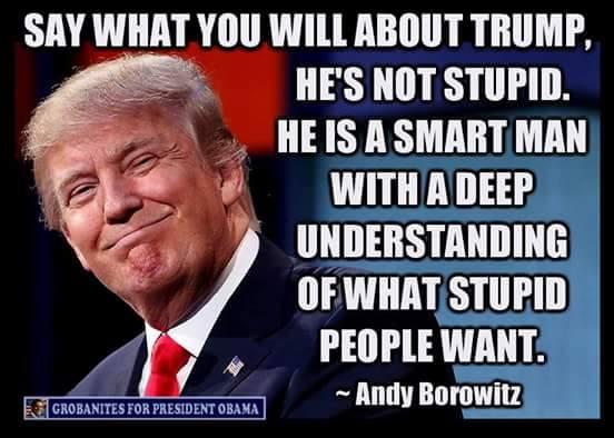 Trump stupid
