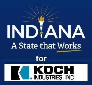 Indiana Koch