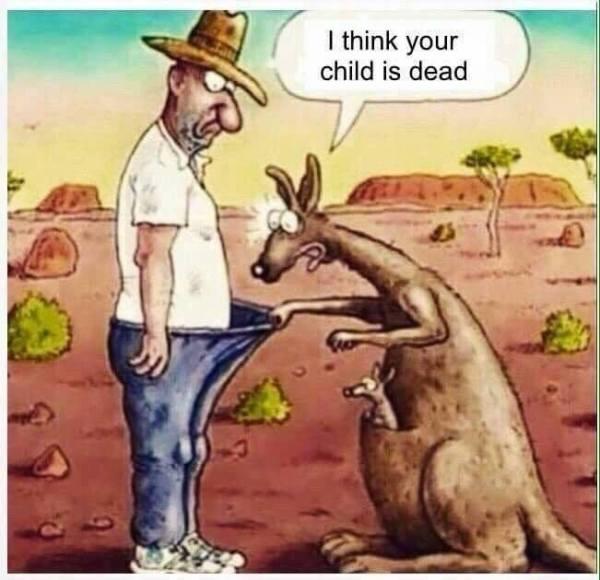 Kangaroo Dead Baby