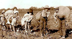 Child-laborers-Facebook-800x430
