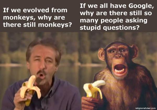 Evolution Monkey Creationism