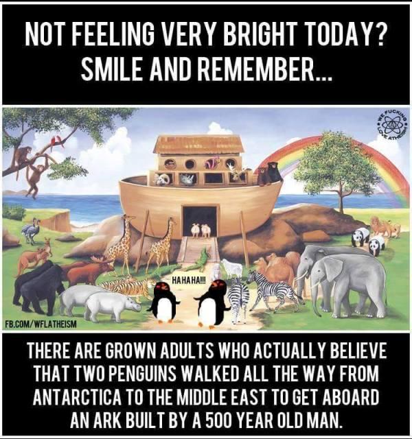 Noah Ark Cracka