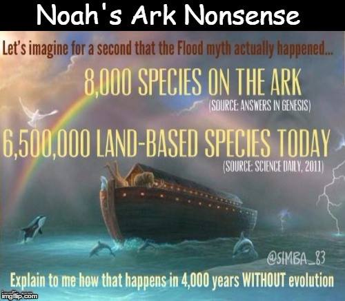 Ark Creation Ham Noah