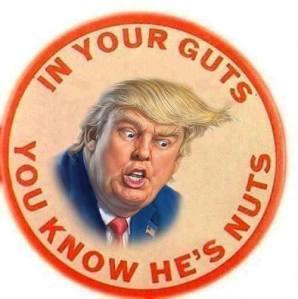 Trump Nuts Guts