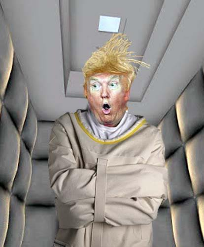 trump-straightjacket